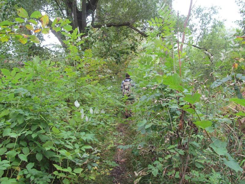 Midden in het bos genieten en bevredigen